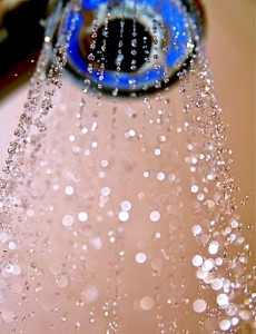 12 cold shower head
