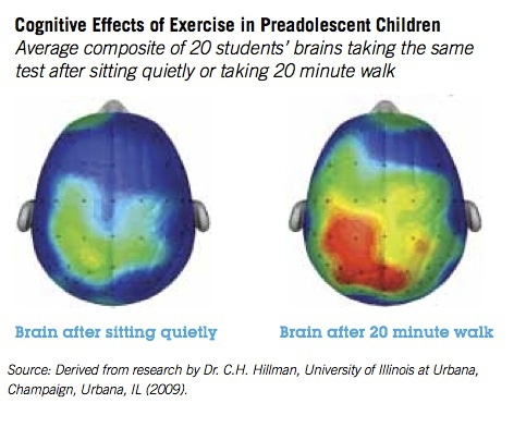 Running Cogitive effects of exercise