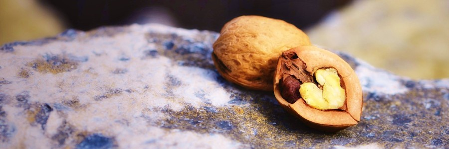 Going Nuts? Here Is Why You Should!