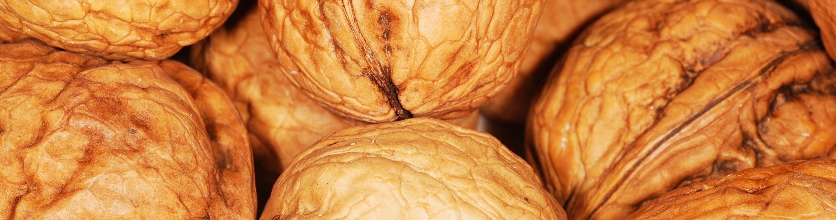 15 nuts walnut-101462